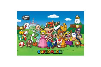 Super Mario Characters Poster (Multicoloured) (One Size)