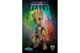 Guardians Of The Galaxy 2 Groot Poster (Multi-colour) (One Size)