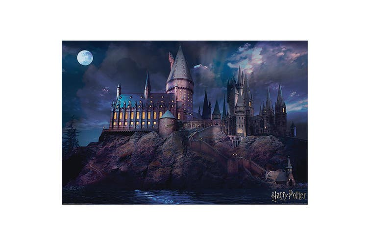 Harry Potter Hogwarts Scene Poster (Multi Coloured) (One Size)