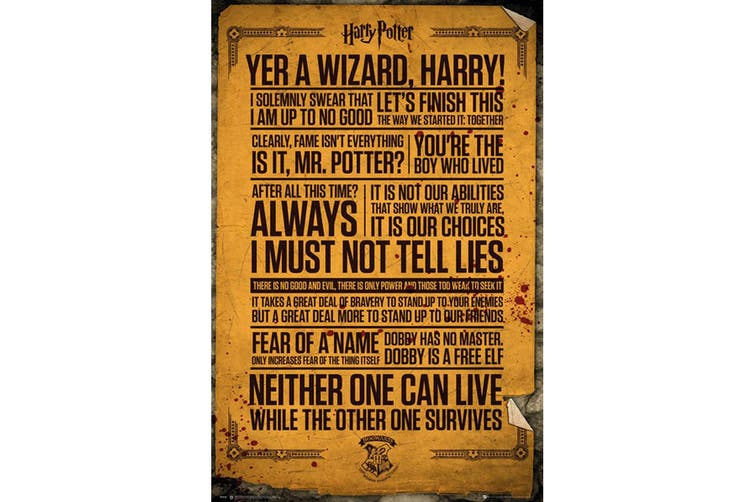 Harry Potter Quotes Poster (Multicoloured) (One Size)