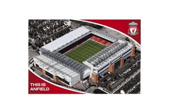 Liverpool FC Stadium Poster (Multicoloured) (One Size)
