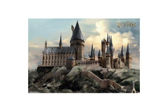 Harry Potter Official Hogwarts Poster (Multicolour) (One Size)