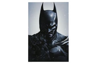 Batman Arkham Poster (Black) (One Size)