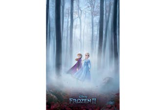Frozen 2 Woods in Fog Poster (Multicoloured) (One Size)