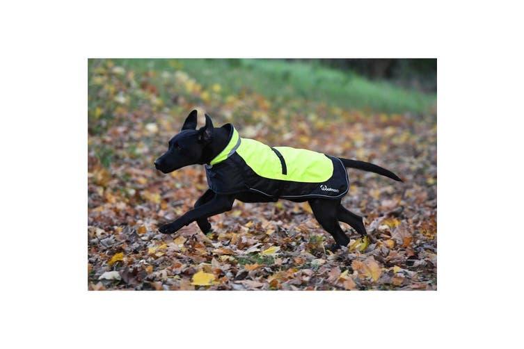 Woofmasta Hi-Viz Flashing Dog Coat (Fluorescent Yellow) (20cm)