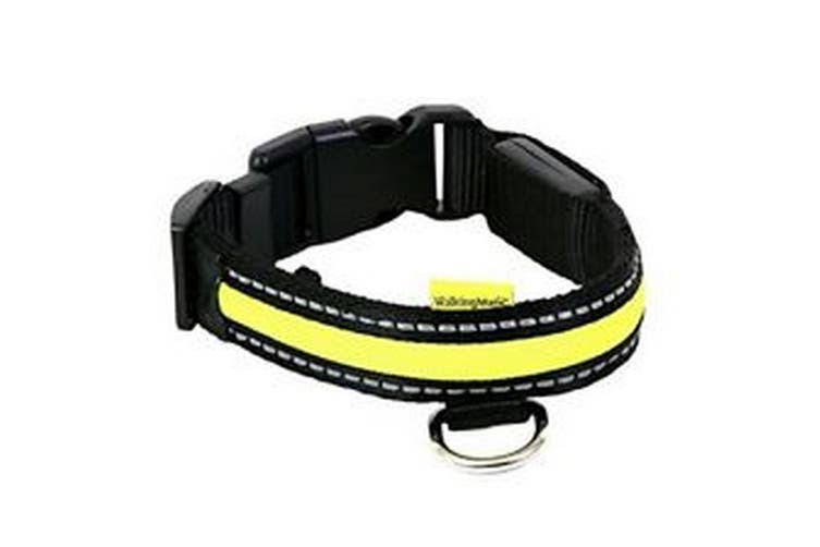 Animates Soft Nylon LED Collar (Green) (43-60cm)