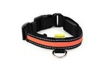 Animates Soft Nylon LED Collar (Orange) (34-41cm)