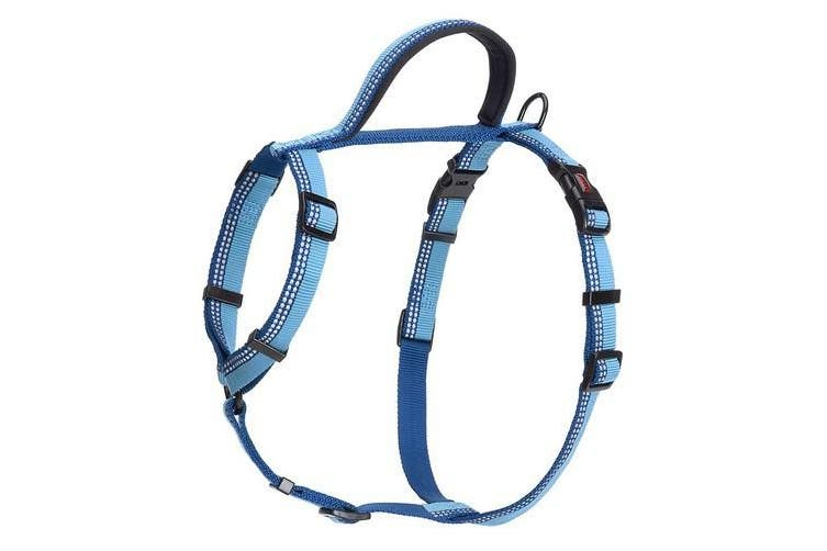 Halti Walking Harness (Blue) (35-48cm)