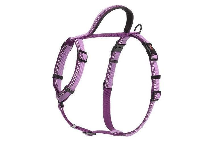 Halti Walking Harness (Purple) (68-100cm)