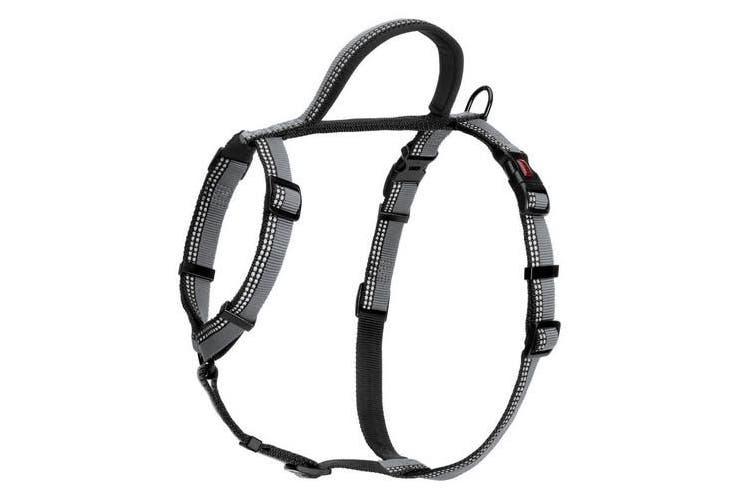 Halti Walking Harness (Black) (35-48cm)