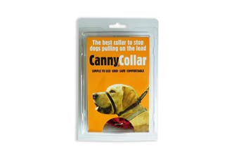 Canny Dog Training Collar (Red) (1)