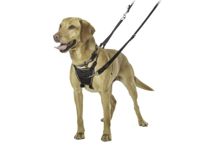 Halti No Pull Dog Harness (Black) (Large)