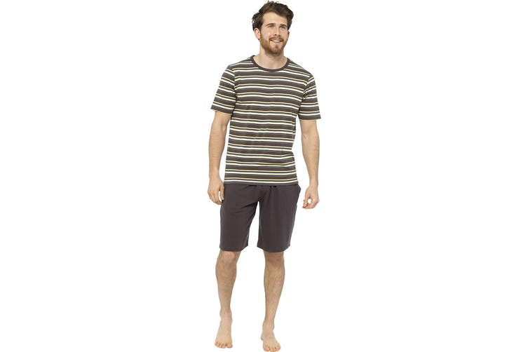 Tom Franks Mens Jersey Striped Short Cotton Pyjama Set (Charcoal) (M)