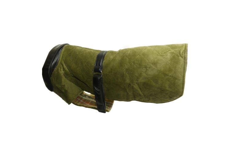 Vital Pet Products Corduroy And Leather Dog Coat (Green) (12in)