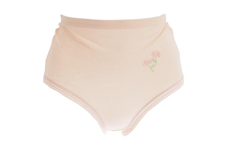 Passionelle Womens/Ladies Pastel Floral Embroidery Cotton Briefs (Pack Of 3) (Pastel) (WMS)