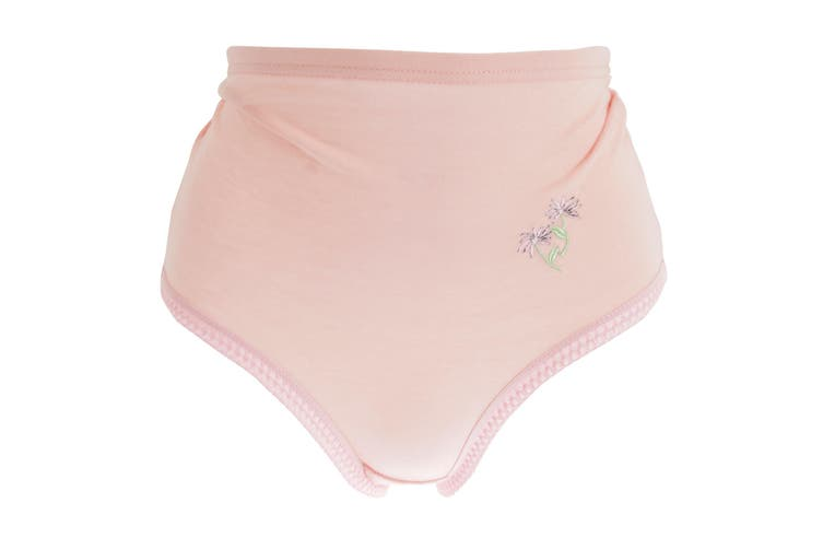 Passionelle Womens/Ladies Pastel Floral Embroidery Cotton Briefs (Pack Of 3) (Pastel) (XOS)