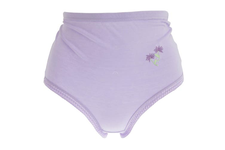 Passionelle Womens/Ladies Pastel Floral Embroidery Cotton Briefs (Pack Of 3) (Pastel) (XXOS)