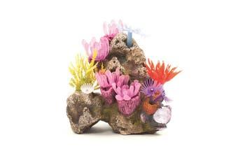Kazoo Soft Coral Garden With Rock