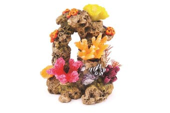 Kazoo Reef Rock With Coral and Plants