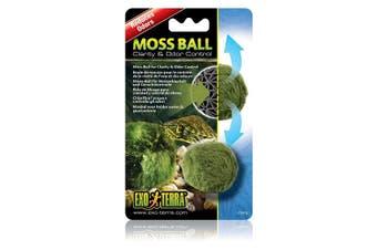 Exo Terra Reptile Moss Ball Clarity & Odour Control Reptile Terrariums ExoTerra