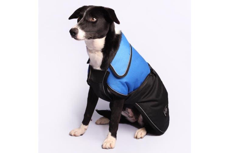 Pet One 50cm Blue Blizzard Dog & Puppy Winter Coat & Raincoat