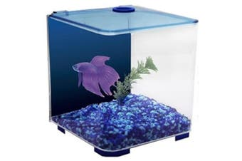 Betta Style Acrylic Siamese Fighting Fish Tank - Blue - 3 Litres (Aqua One)
