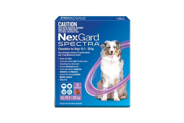 NexGard SPECTRA Flea, Tick & Heartworm for Dogs 15.1-30kg - Purple - 6 Pack