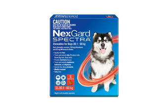 NexGard SPECTRA Flea, Tick & Heartworm for Dogs 30.1-60kg - Red - 6 Pack