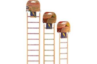 Medium Cement Bird Ladder (All Pet) - 7 Steps