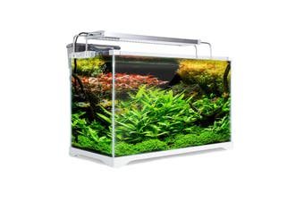 39L Starfire Glass Aquarium Fish Tank