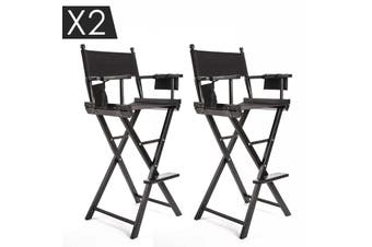 2X 77cm Tall Director Chair - DARK HUMOR