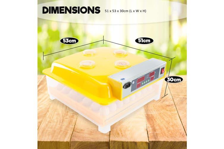 56 Eggs Digital Incubator With Tray