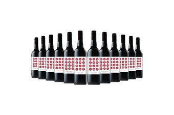 Zodiac Shiraz NV (12 bottles)