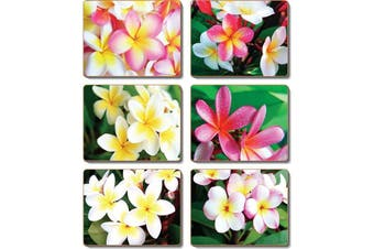 Cinnamon Cork Backed Coasters Set of 6 Frangipani Garden