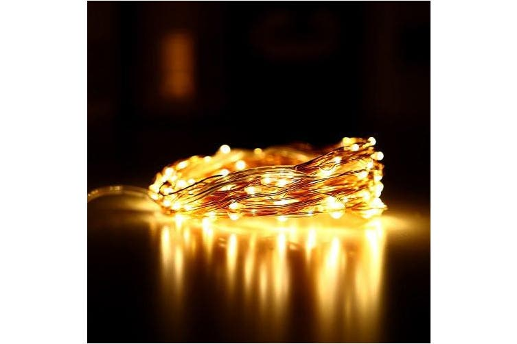 KPSSDD 10m 100-LED USB Decoration Light Strip- Copper 1Pc