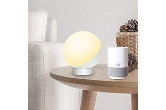 Smart WiFi Voice Control Night Light LED Eye-protection Table Lamp- White
