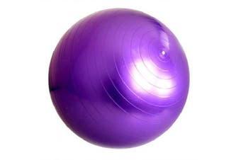 Yougle 65 cm Exercise Ball And Air Pump For Yoga Fitness Pilates Balance Gym Aerobic Ball- Purple China