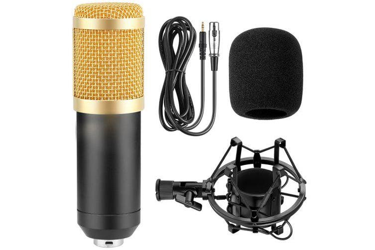800 Wired Microphone for Singing Recording- Gold