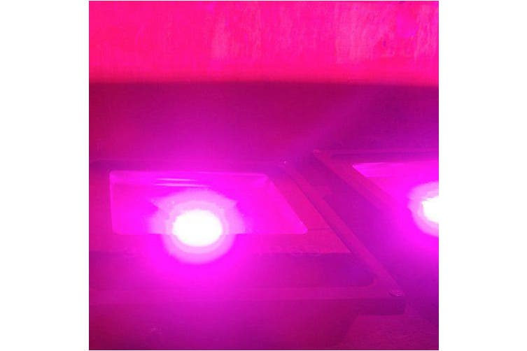 10W 20W 30W Full Spectrum Plant Grow Lightfor Vegetable Flower AC180-265V- Bright Orange 30W