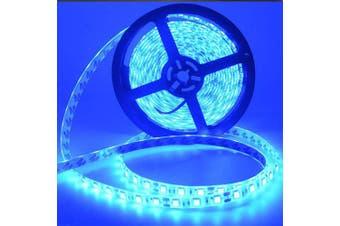 MAGOTAN 5 M flexible LED strip 300 LED SMD5050Self-adhesive12 V 2 pieces- Blue