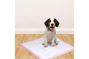 PaWz 400 Pcs 60x60 cm Pet Puppy Toilet Training Pads Absorbent Lavender Scent Blue /Pink/Pink with Lavender Scent/White with Meadow Scent