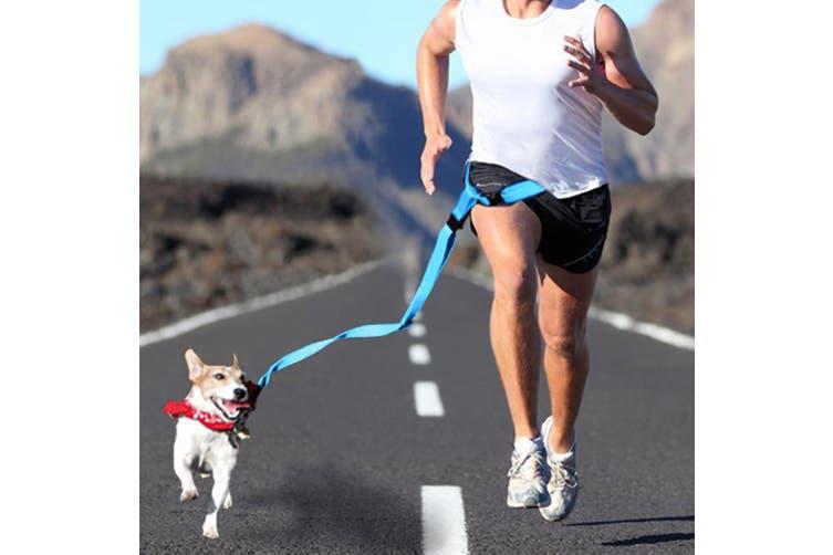 Adjustable Dog Hands Free Leash Waist Belt Buddy Jogging Walking Running Blue