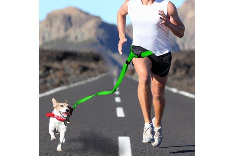 Adjustable Dog Hands Free Leash Waist Belt Buddy Jogging Walking Running Green