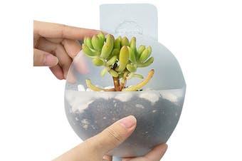 2Pcs Mini Planter Wall Mounted Hanging Plant Pots Transparent