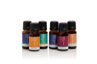 ECO. Bestselling Essential Oil Blends 6 Pack
