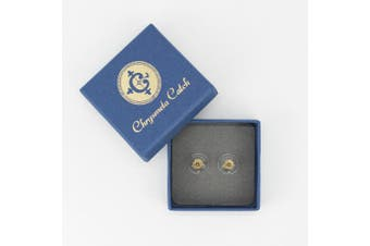 (Yellow Gold with Disc) - Chrysmela Lift and Lock Yellow Gold Replacement Earring Back Earring Lifter for All Types of Earring Posts auto Adjustable auto Locking Hypoallergenic Patented in US UK France Italy and Japan