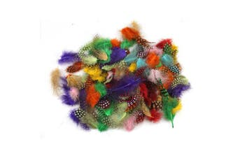 (Multi-colored) - Celine lin 100PCS Coloured Spotted Guinea Pheasant Feathers Plume Decoration Accessories,Multi-coloured