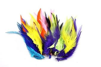 (Multi-colored) - Celine lin 100PCS Saddle Hackle Rooster Feathers Natural Pheasant Neck feathers 10cm - 15cm ,Multi-coloured