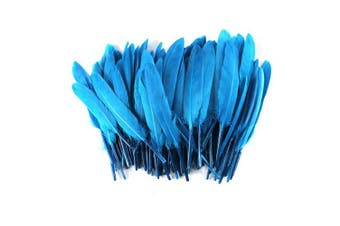 (Lake blue) - Celine lin 100PCS Dyed Home Decor Goose Feather For Art,Home Party or Wedding 10cm - 15cm ,Lake blue