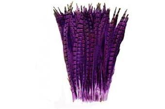 (Purple) - Celine lin 10PCS Natural Pheasant Feathers Pheasant Tails 14-16inch(35-40CM),Purple